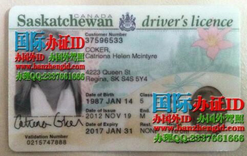 Saskatchewan driver's license