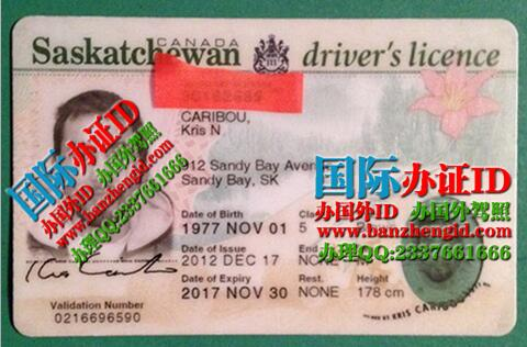 萨省驾驶执照Saskatchewan driver's license