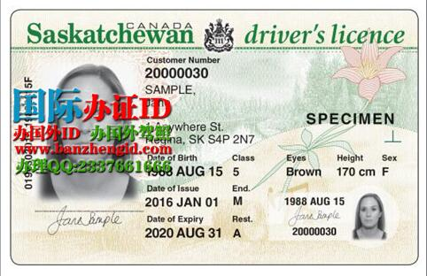 萨省ID驾照Saskatchewan ID driver's license