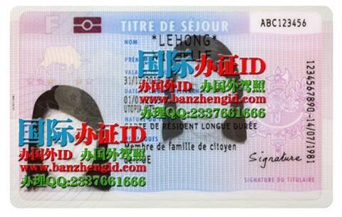 French permanent resident card