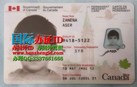 办加拿大枫叶卡Canadian Maple Leaf Card