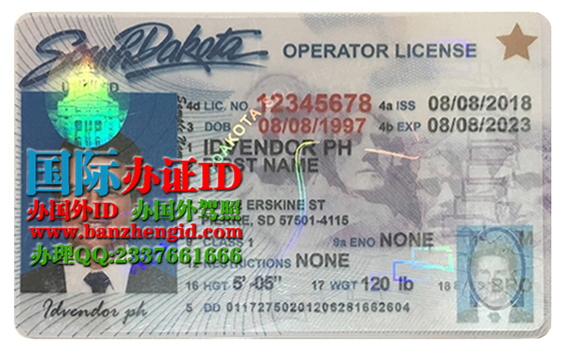 南达科他州驾照,South Dakota driver's license,South Dakota ID